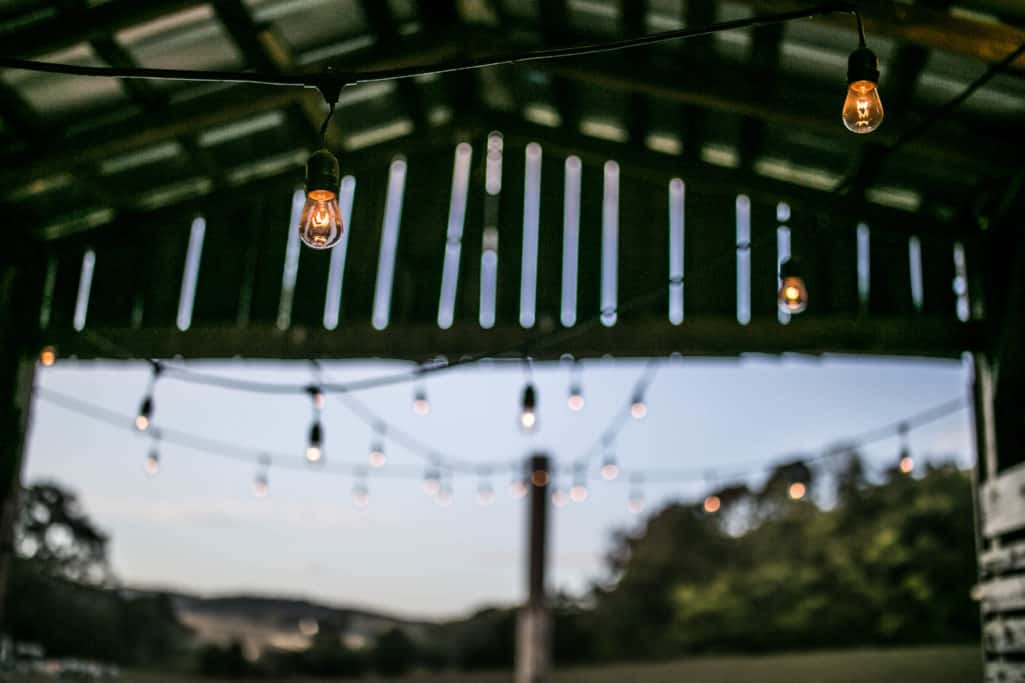 Chicken Barn String lights.